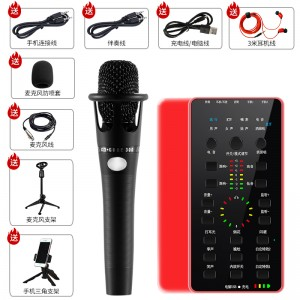BGN E25RED Mixer (Red) & Condenser Microphone Live Broadcast Set