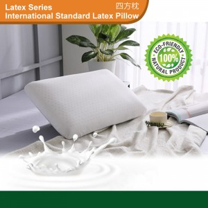 Homelatex International Standard Latex Pillow, PA